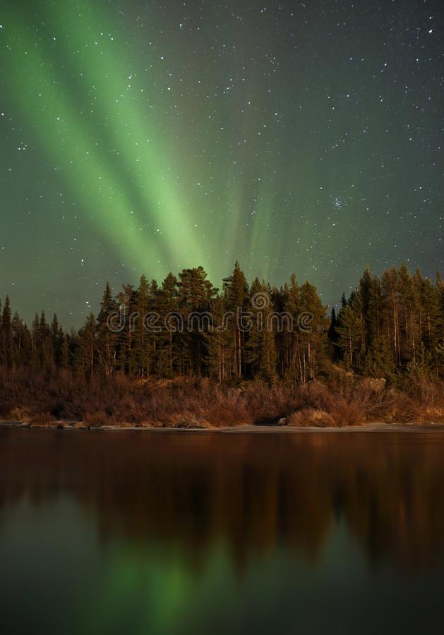 Northern lights in finland royalty free stock photography