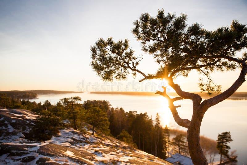 Finland, Helsinki, de recente herfst Oostzee, baai royalty-vrije stock foto's