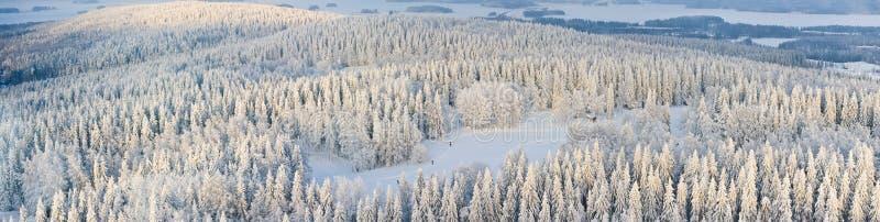 finland panoramavinter fotografering för bildbyråer