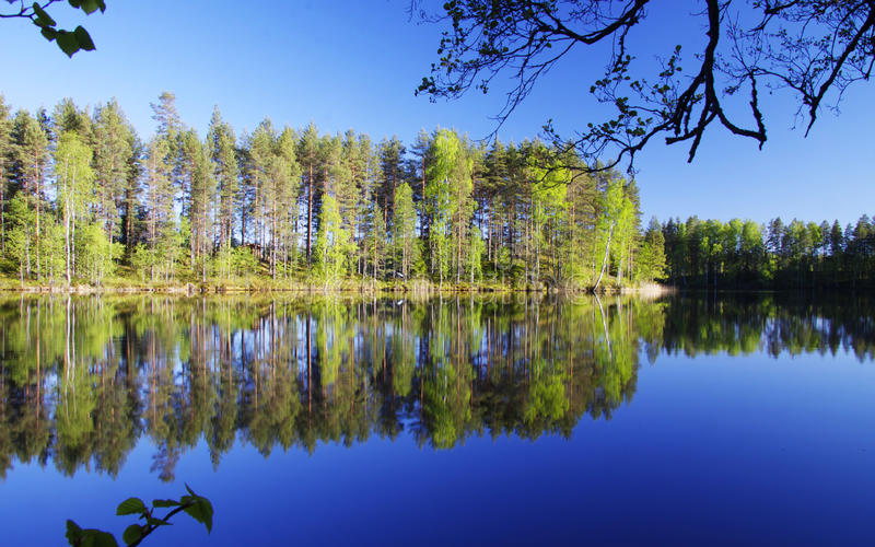 Finland: Spring by a calm lake. Colorful forest and calm blue lake in Southern Finland royalty free stock image