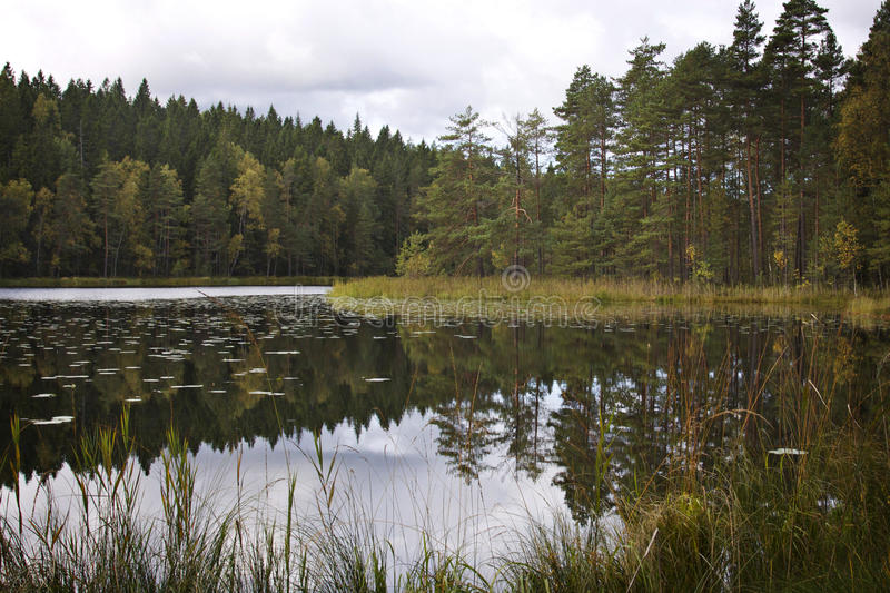 Finland: View by a lake stock photography