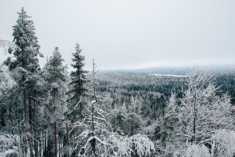 finland zima obrazy royalty free