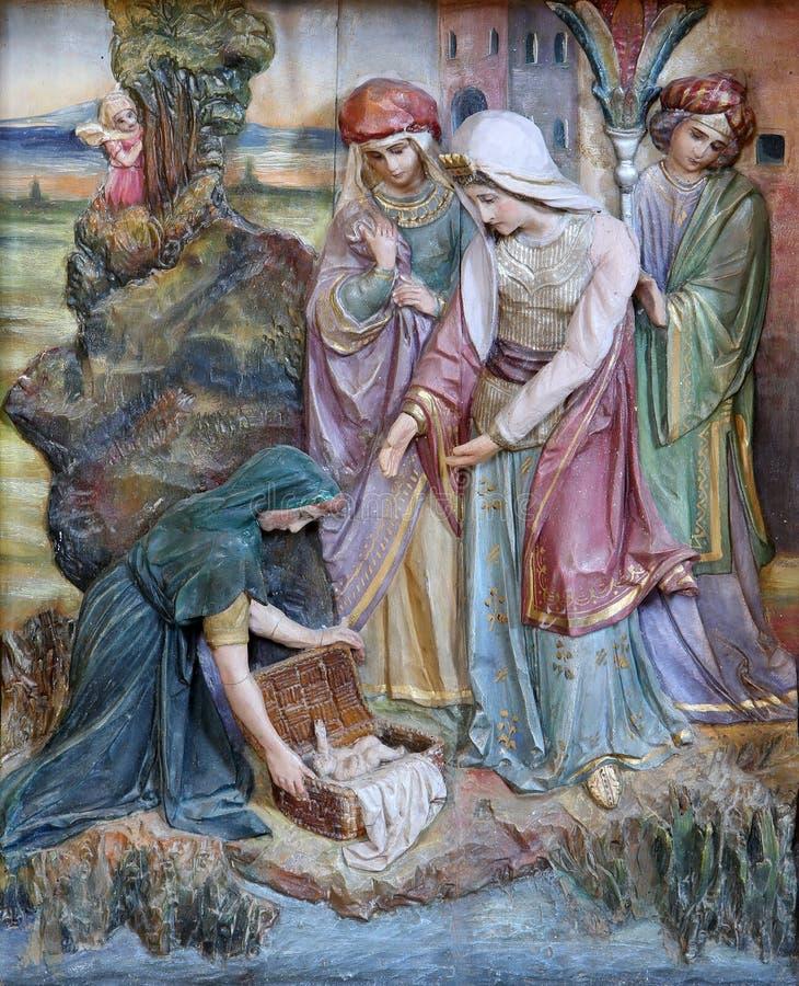Finna av Moses royaltyfria bilder