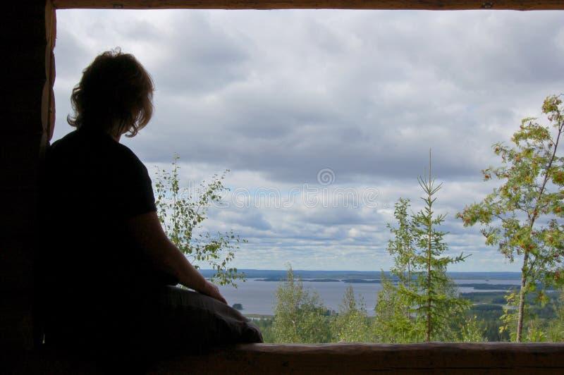 Finnische Aussicht stockbild