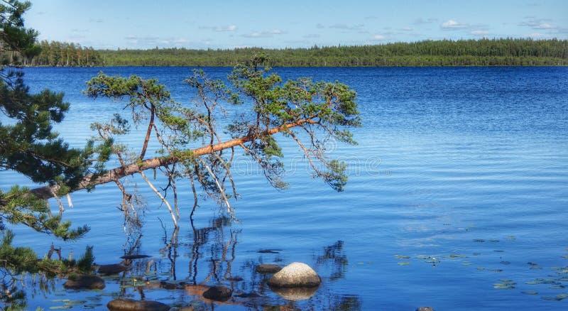 Finnisches lakeview stockbild