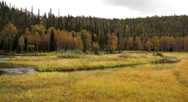 Finnish nature stock images