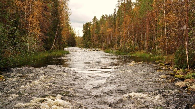 Finnish nature stock photos