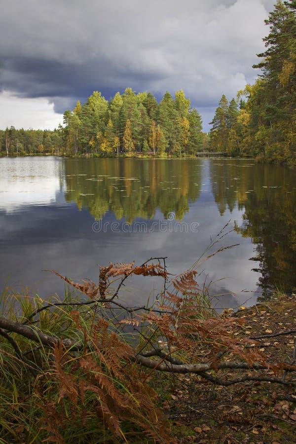 Finnland: Bunter Herbst lizenzfreie stockfotos