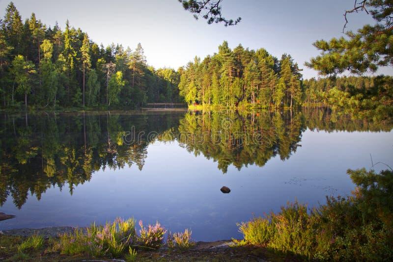 Finnland: Ruhiger See am Sommer lizenzfreie stockfotos