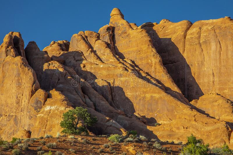 Fins at Devils Garden in Utah royalty free stock photos