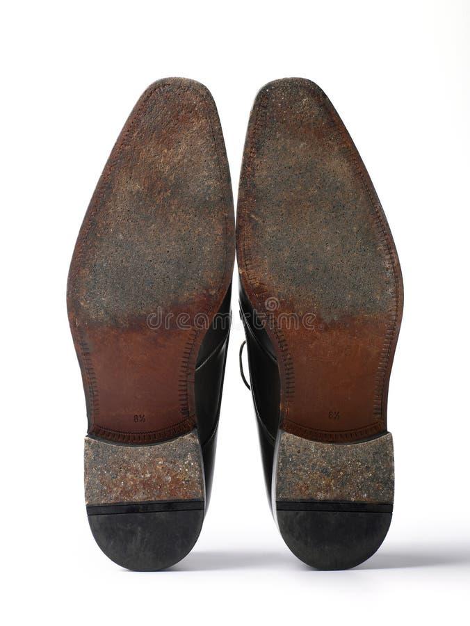 fint läder shoes solen royaltyfria foton