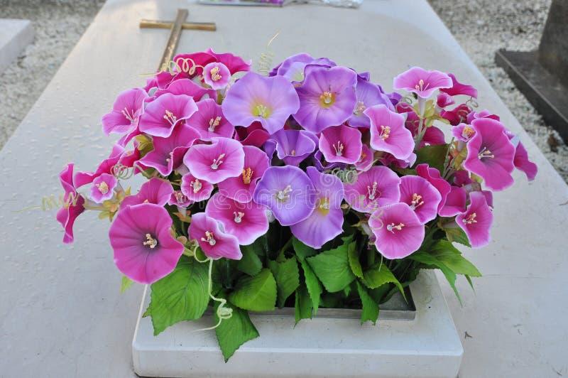 Fiołka grobowiec i kwiaty zdjęcia royalty free