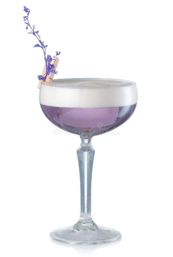 Fiołkowy alkoholu koktajl z dżinem i lawendowym kwiatem odizolowywającymi obrazy stock