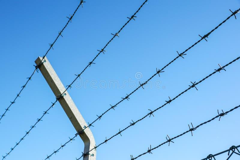 Fio enrolado da lâmina com suas farpas de aço afiadas sobre uma cerca de perímetro da malha assegurando a segurança imagem de stock