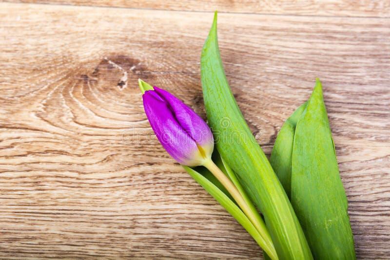 Download Fiołkowy Tulipan Na Drewnianym Stole Obraz Stock - Obraz złożonej z roślina, sezon: 106910455