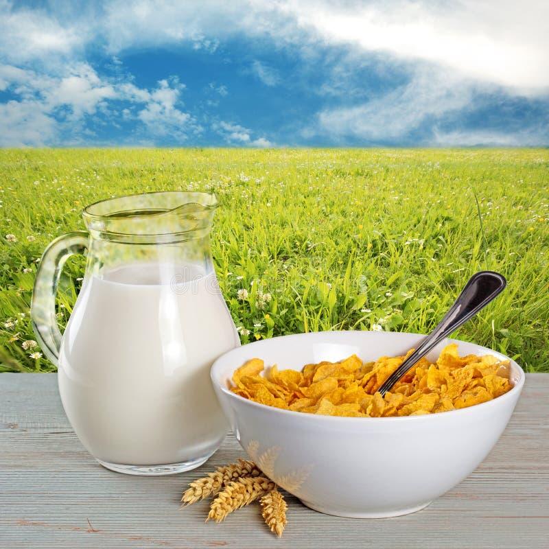 Fiocchi di granturco e brocca di latte fotografia stock libera da diritti