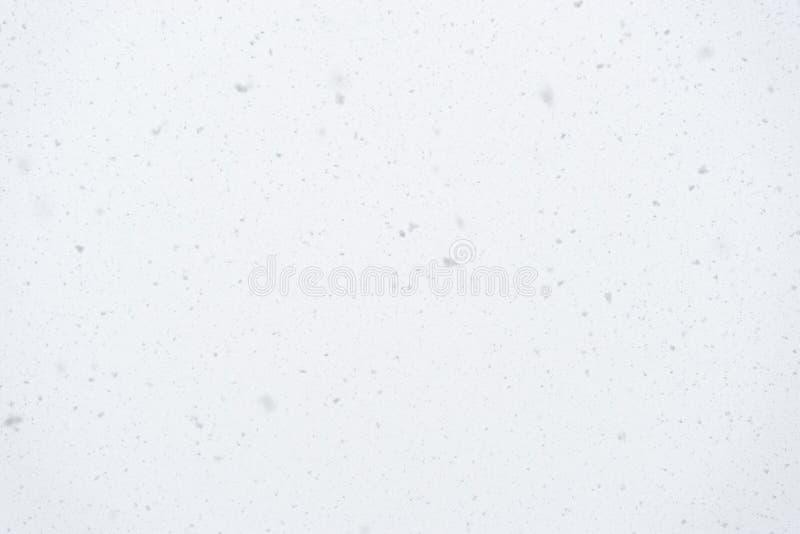 Fiocchi di neve di caduta reali su fondo leggero, tempo della bufera di neve, doccia di neve naturale il giorno di inverno, fuoco fotografie stock