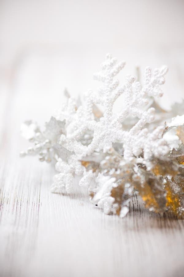 Fiocco di neve. fotografia stock