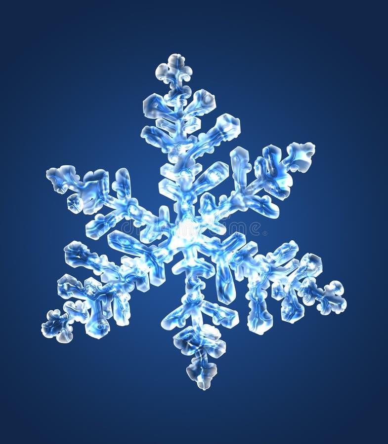 Fiocco di neve 5 immagini stock