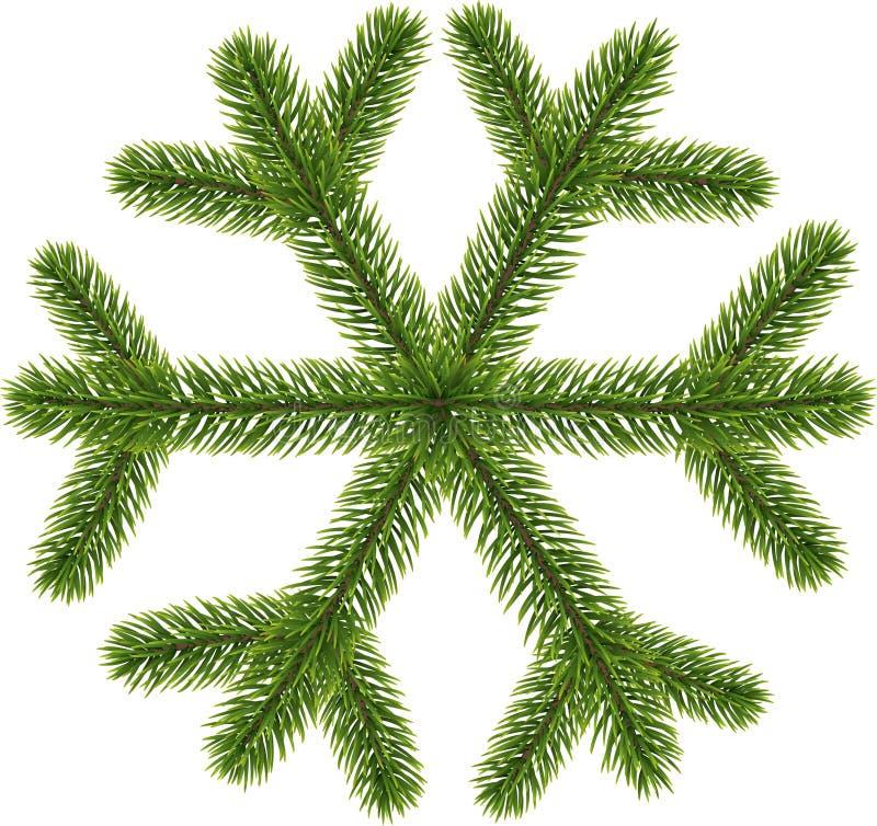 Fiocco di neve conifero verde su bianco illustrazione di stock