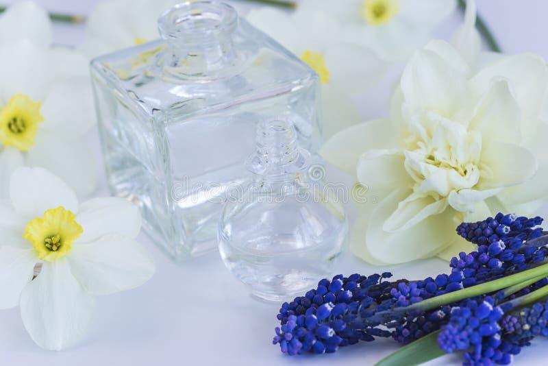 Fioles avec des fleurs d'huile essentielle et de narcisse et de muscari photographie stock