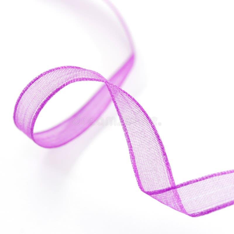 fioletowy wstążki obraz stock