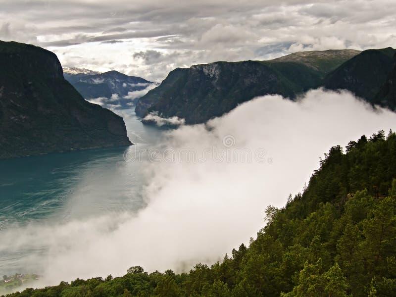 Fiord in Noorwegen royalty-vrije stock afbeelding