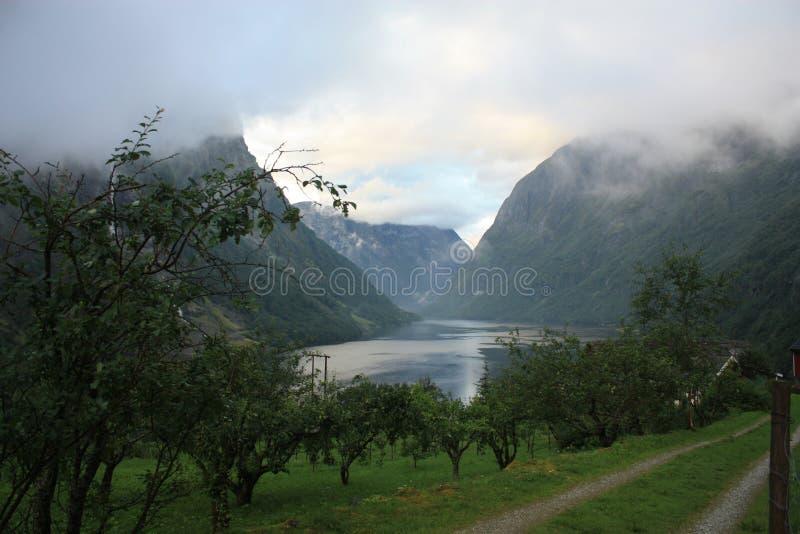 Fiorde impressionante de Nærøyfjord em Noruega Escandinávia fotografia de stock