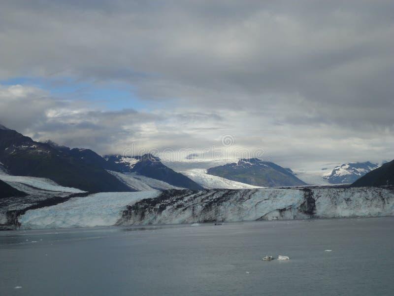 Fiordo Alaska de la universidad del glaciar de Harvard Glaciar grande que resbala dentro del Océano Pacífico en Alaska imágenes de archivo libres de regalías
