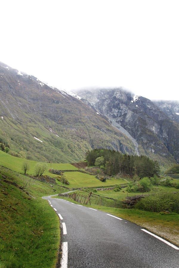 Fiordo-camino imagen de archivo