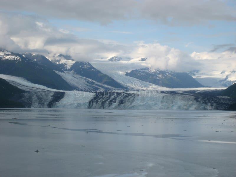 Fiordo de la universidad, Alaska fotografía de archivo