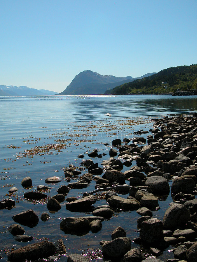 Fiordo norvegese fotografia stock