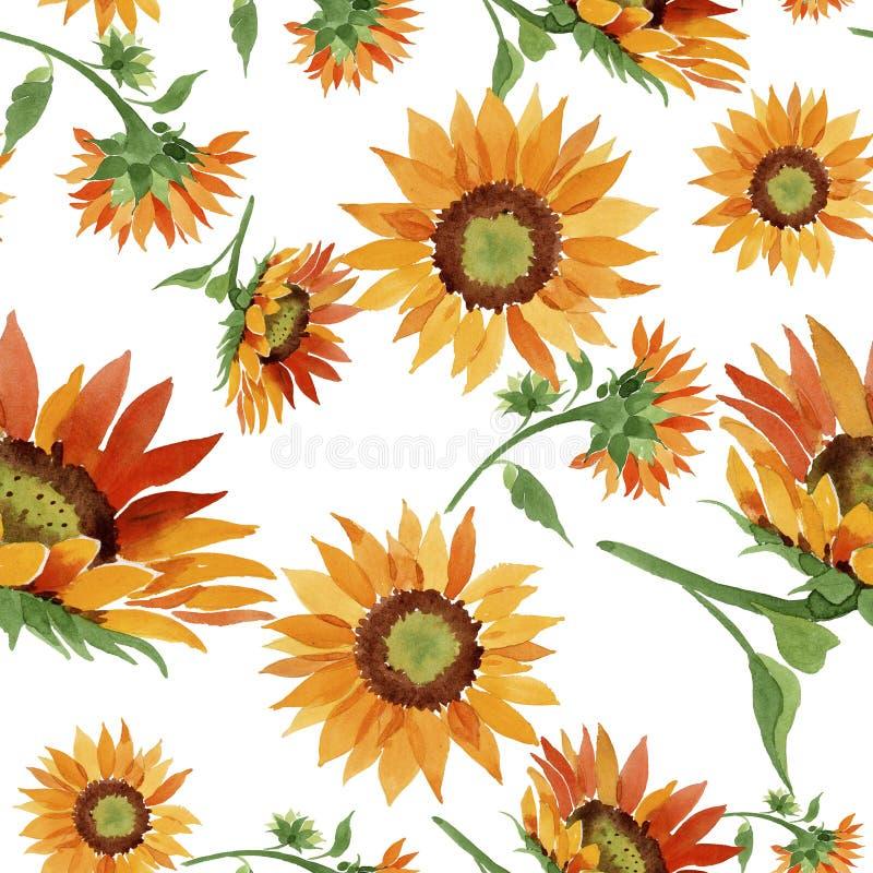 Fiore arancio del girasole dell'acquerello Fiore botanico floreale Modello senza cuciture del fondo illustrazione vettoriale