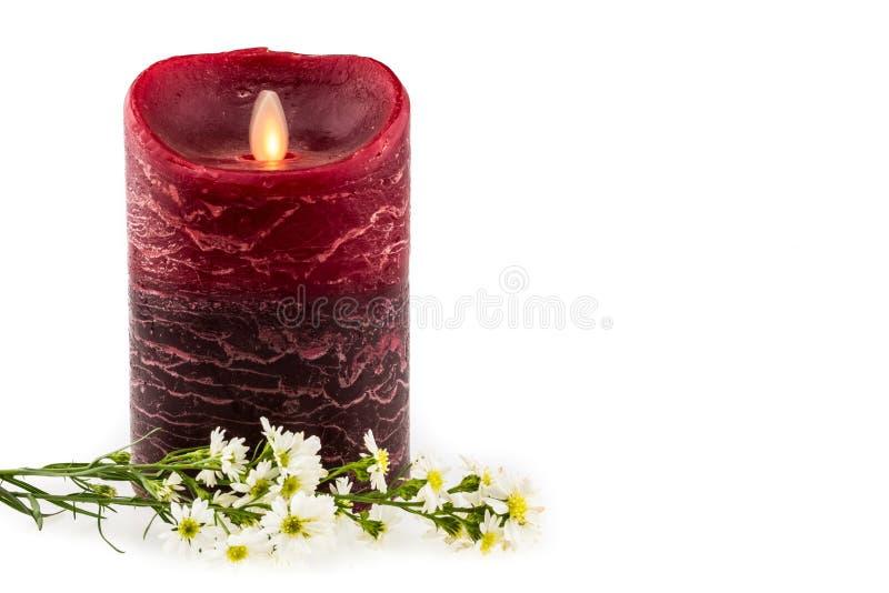 Fiore bianco della taglierina con la candela elettrica nero/rossa sulla parte posteriore di bianco fotografie stock libere da diritti