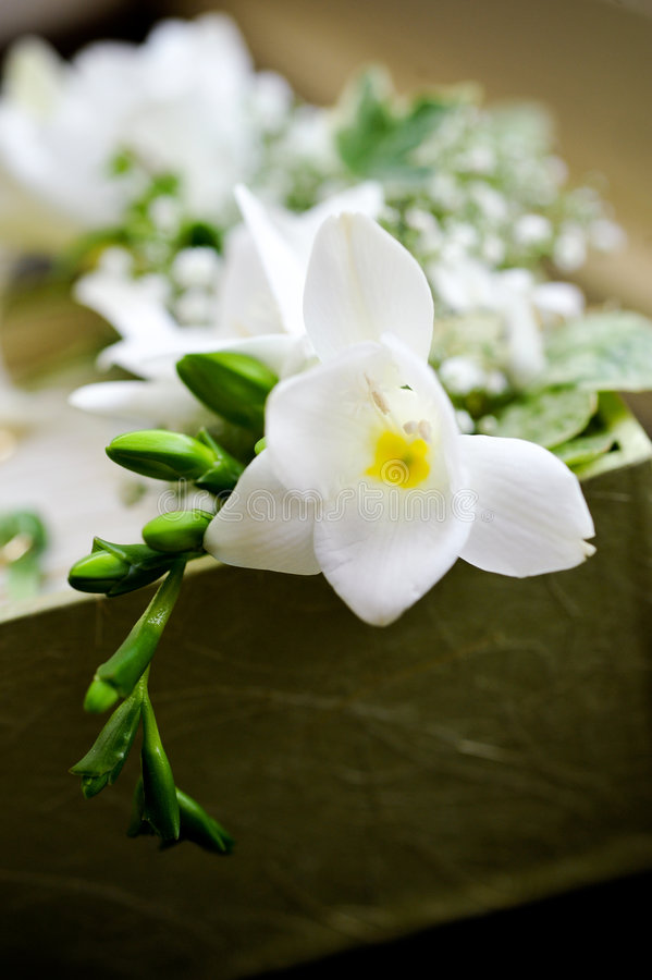 Fiore bianco di cerimonia nuziale fotografia stock libera da diritti
