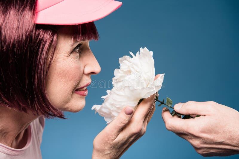 Fiore bianco di tenuta ed odorante della donna anziana immagini stock libere da diritti