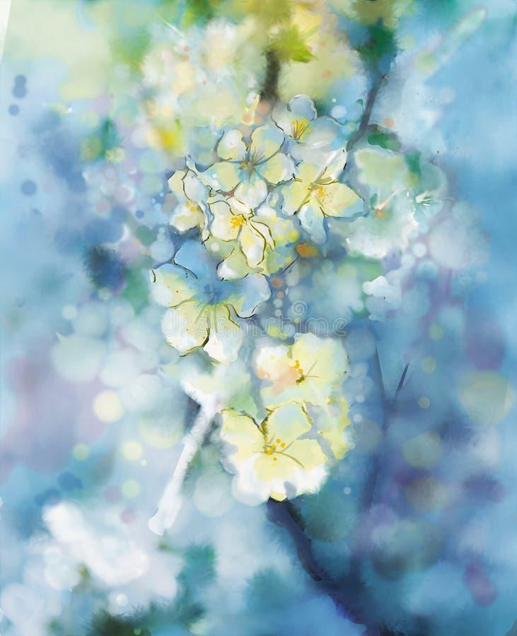 Fiore bianco di verniciatura dell'albero di albicocca dell'acquerello astratto illustrazione vettoriale