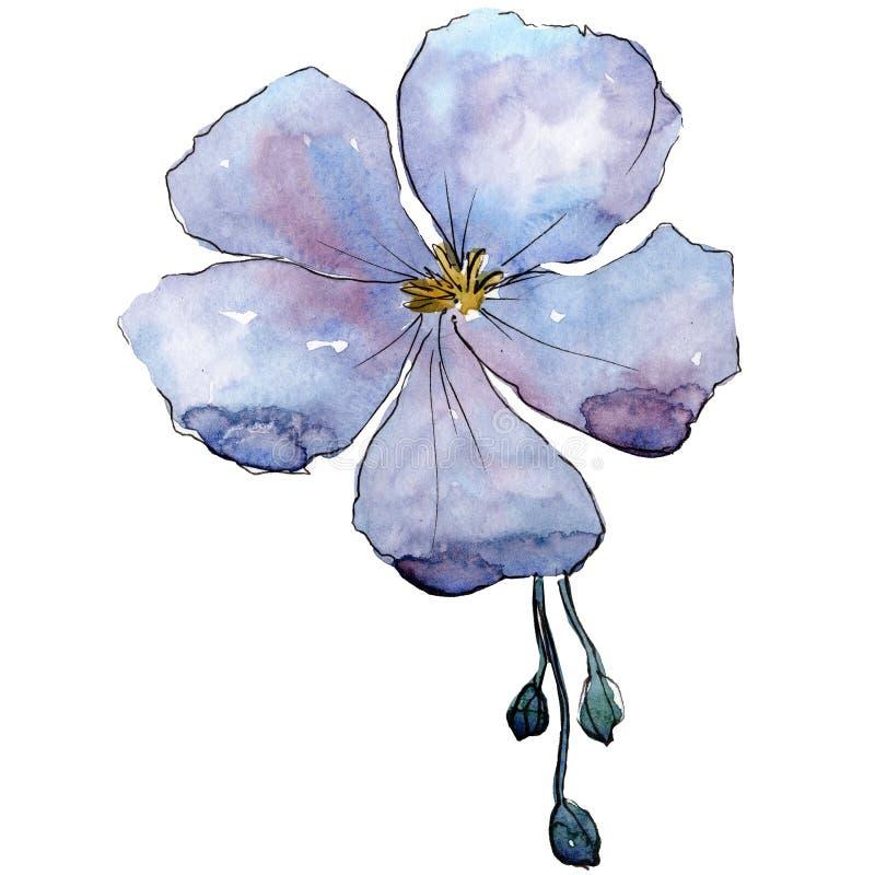 Fiore blu del lino con i germogli verdi Elemento isolato dell'illustrazione del lino Insieme della priorità bassa dell'acquerello illustrazione di stock