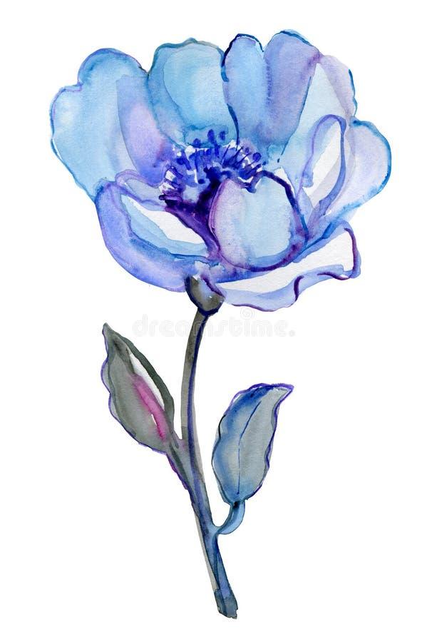 Fiore blu isolato su un fondo bianco royalty illustrazione gratis