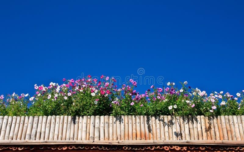 Fiore in casella di bambù fotografia stock libera da diritti