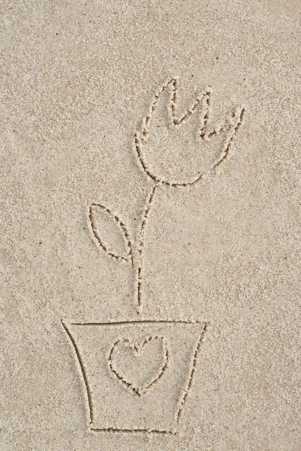 Fiore che assorbe sabbia immagine stock libera da diritti