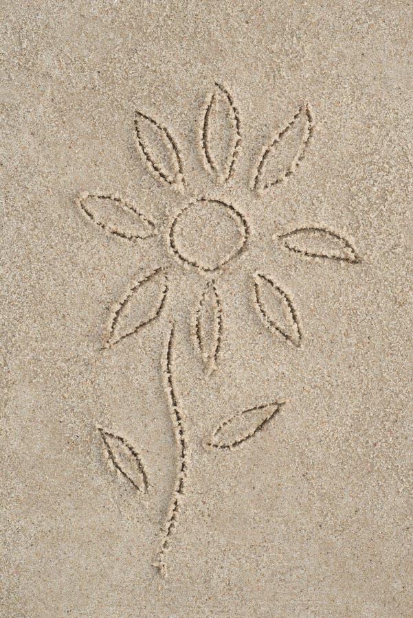 Fiore che assorbe sabbia fotografia stock