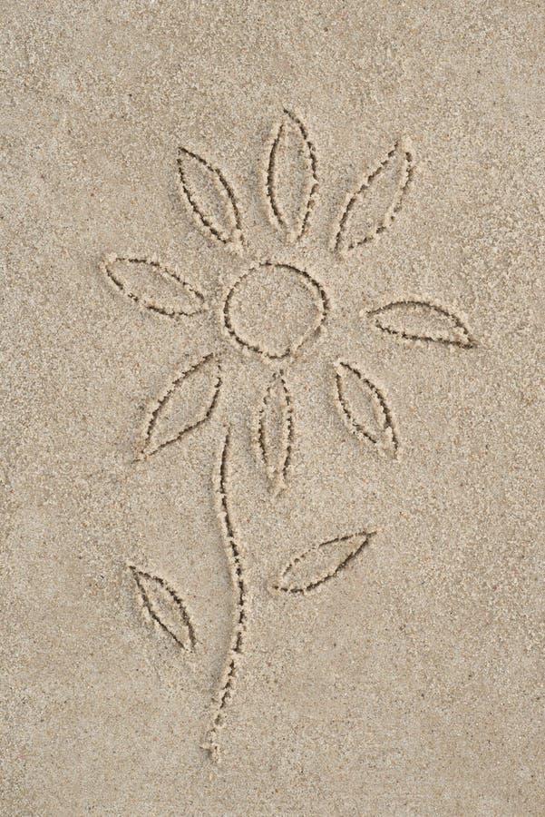 Fiore che assorbe sabbia fotografie stock