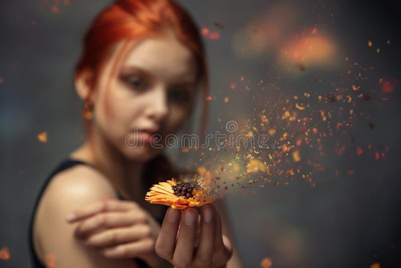 Fiore che si sbriciola nelle mani di una ragazza dai capelli rossi fotografia stock libera da diritti