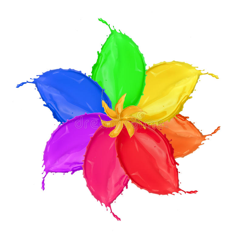 Fiore colorato immagini stock libere da diritti