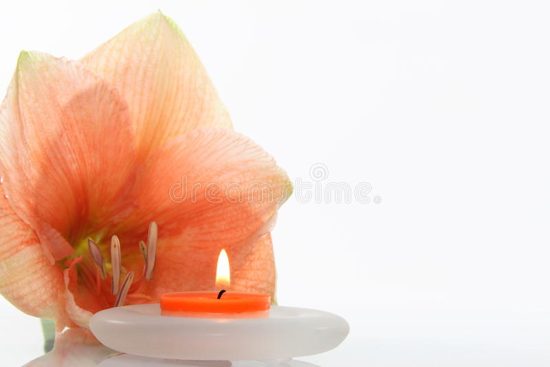 Fiore con la candela fotografie stock