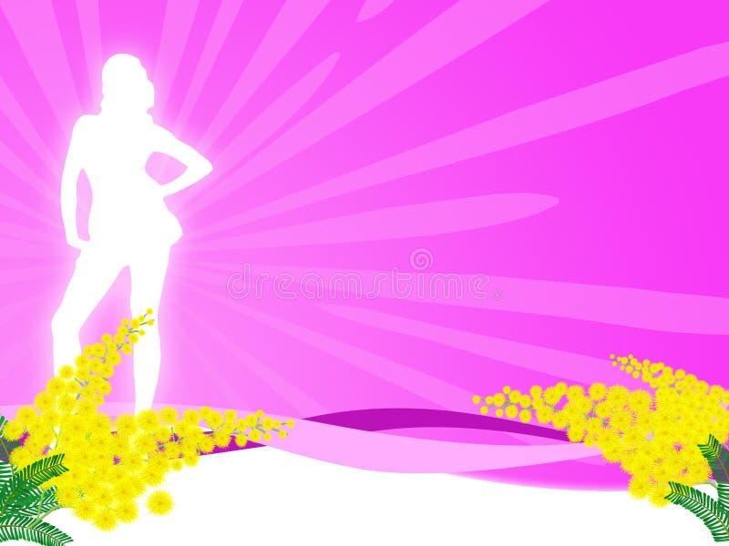 Fiore del Mimosa illustrazione di stock