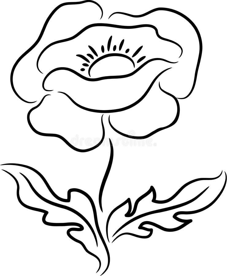 Fiore del papavero royalty illustrazione gratis