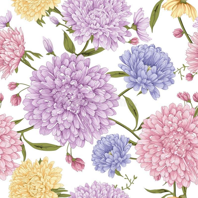 Fiore dell'aster con fondo bianco royalty illustrazione gratis