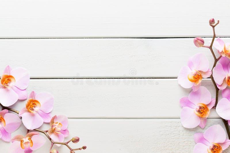 Fiore dell'orchidea sui precedenti pastelli di legno Stazione termale e scena di benessere fotografie stock